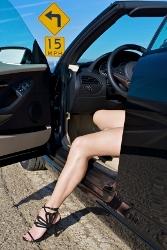 Summer Car Legs