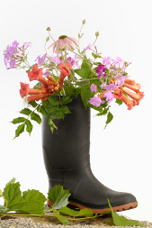 Wellie with flowers