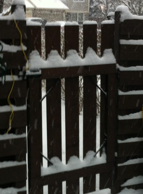 winter_gate_elengrey_january_2013