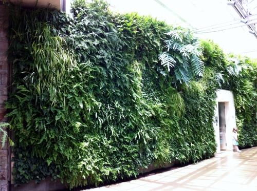 green_wall_3_longwood_gardens_elengrey_may_2013 (1280x956)