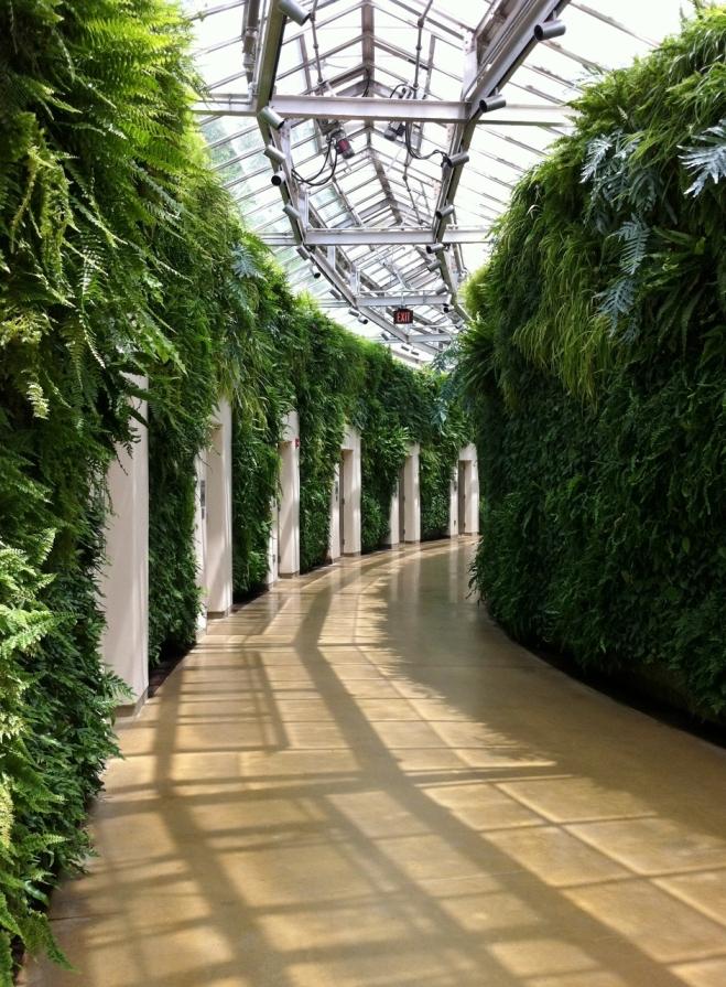 green_wall_4_longwood_gardens_elengrey_may_2013 (942x1280)