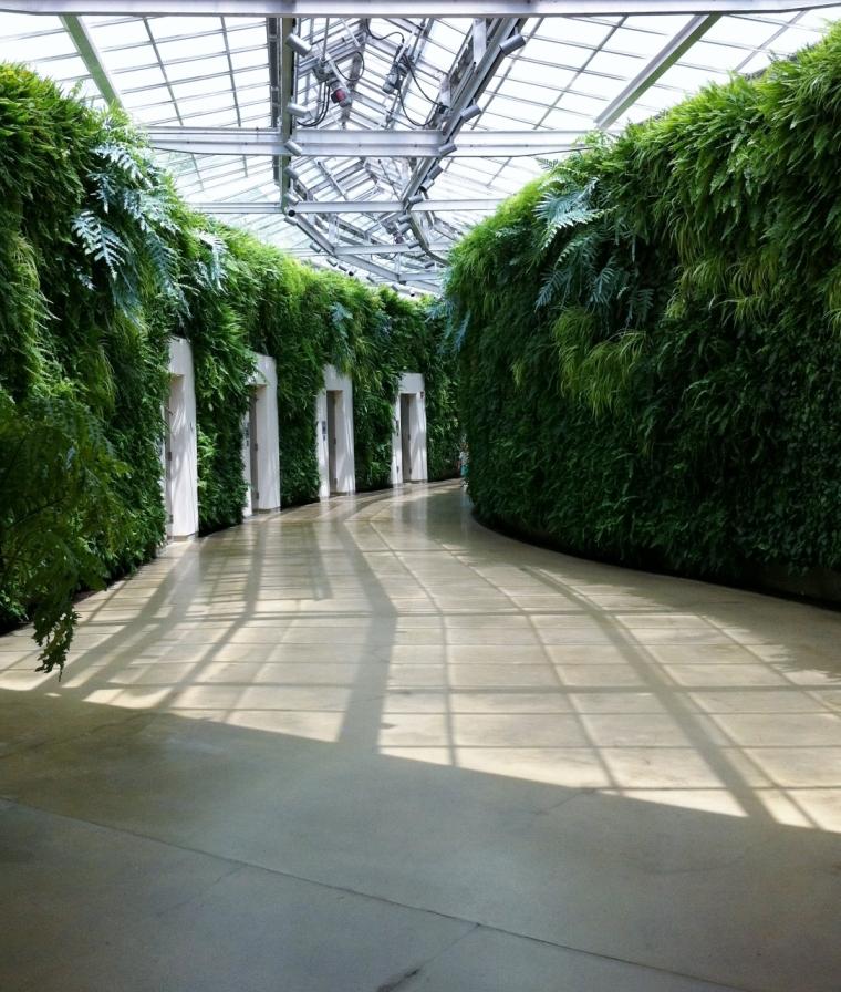 green_wall_longwood_gardens_elengrey_may_2013 (1085x1280)