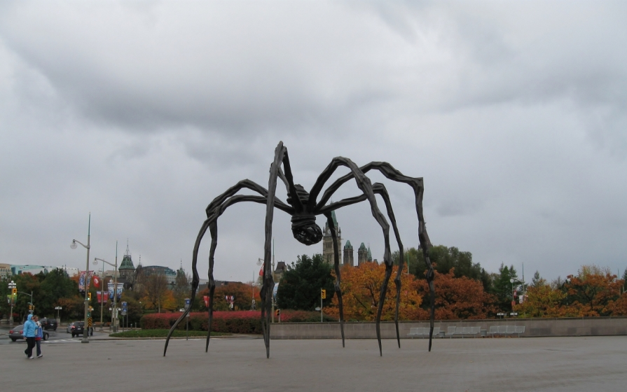IMG_3056_ottawa_spider_2_elengrey_october_2011 (1280x802)