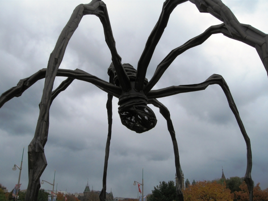 IMG_3058_ottawa_spider_4_elengrey_october_2011 (1280x960)