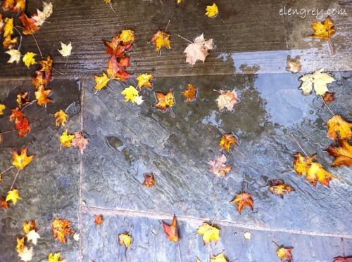 IMG_8523_autuman_reflections_elengrey_october_2014 (1280x956)