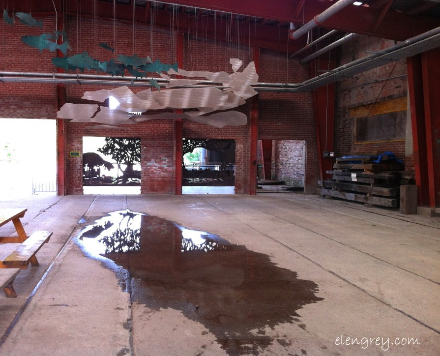 IMG_7300_reflection_puddle_elengrey_september_2014 (1280x1036)