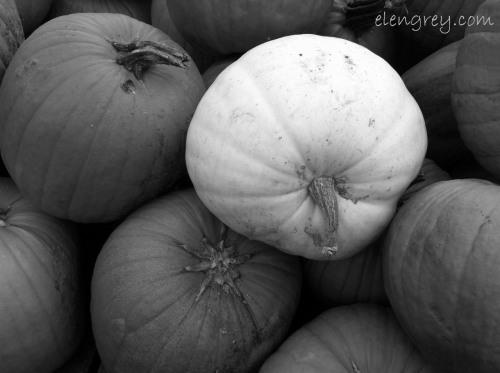 IMG_8239_stand_out_elengrey_october_2014 (1280x956)