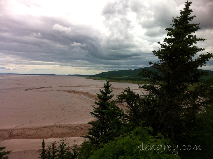 IMG_0938_daniels_flats_bay_of_fundy_nb_elengrey_june_2015 (1280x956)