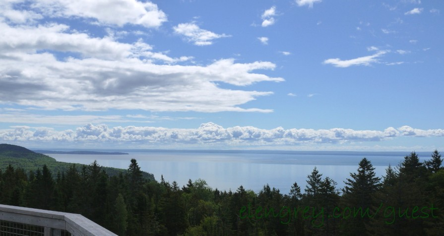 fundy_national_park_4_june_2015 (1280x682)