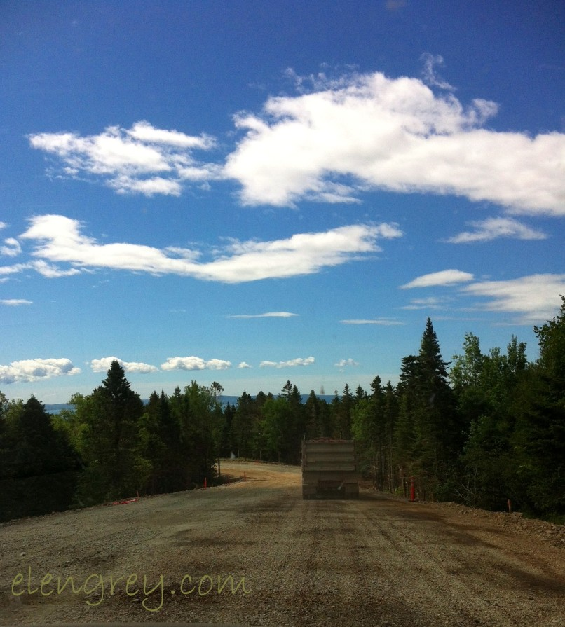 IMG_0863_road_to_alma_elengrey_june_2015 (1152x1280)