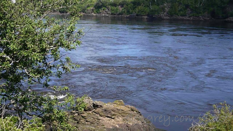 reversing_rapids_saint_john_june_2015 (1280x720)