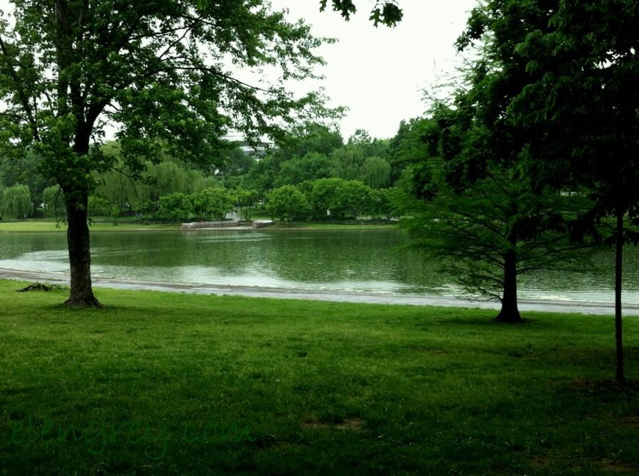 park_national_mall_washington_dc_elengrey_may_2013 (1280x956)
