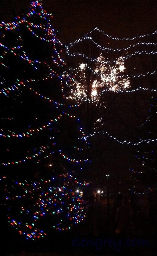 IMG_2220_tree_lighting_2_elengrey_december_2015 (785x1280)