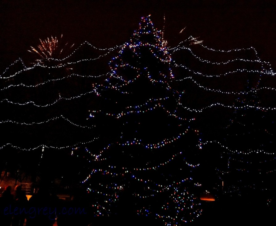 IMG_2246_tree_lighting_3_elengrey_december_2015 (1280x1049)