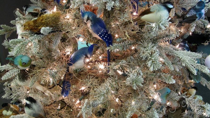 IMG_3278_12_trees_elengrey_december_2011 (1280x720)