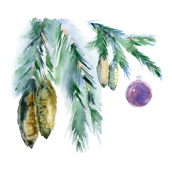 Watercolor spruce branches with cones and christmas ball